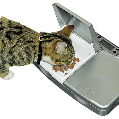 Petsafe Pet Feeder
